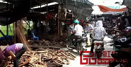 越南木材市场一度活跃在世界舞台